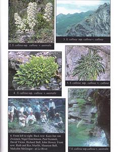 Summer 2003, photograph 2 by Ad van Zwienen, photograph 4 by Kees Jan van Zwienen