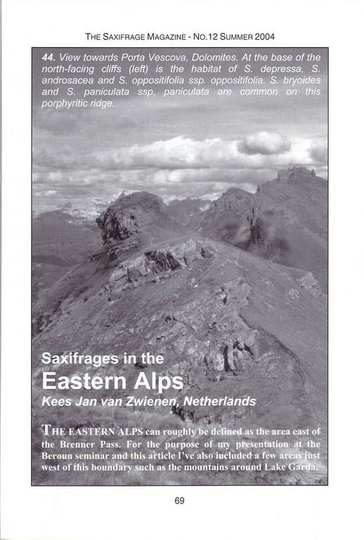 Saxifrages in the Eastern Alps, Summer 2004, Kees Jan van Zwienen