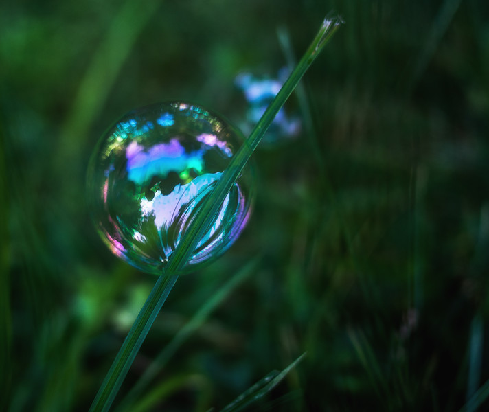 © 2015 Myrna Walsh - Bubble Pod