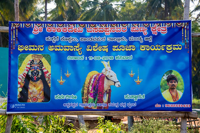 Cow Blesses the Temple under construction
