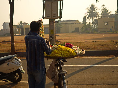 Mobile flower merchant, Gokulum