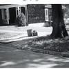 Sidewalk (02173)