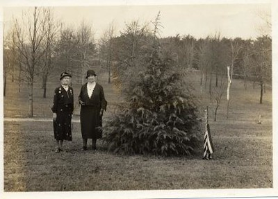 Two Ladies and a Tree (02140)