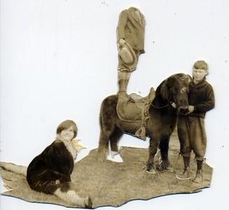 Unidentified Children with Pony (02302)