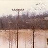 Flood Waters VII (02159)