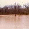 Flood Waters VIII (02160)
