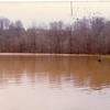 Flood Waters IX (02161)
