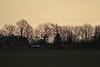 Tidigt morgonljus över Mossen