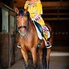 Erin Adams-58-527-529