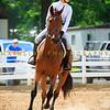 2016 SH Horse Show-5166