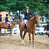 2017 Sewickley Horse Show-251
