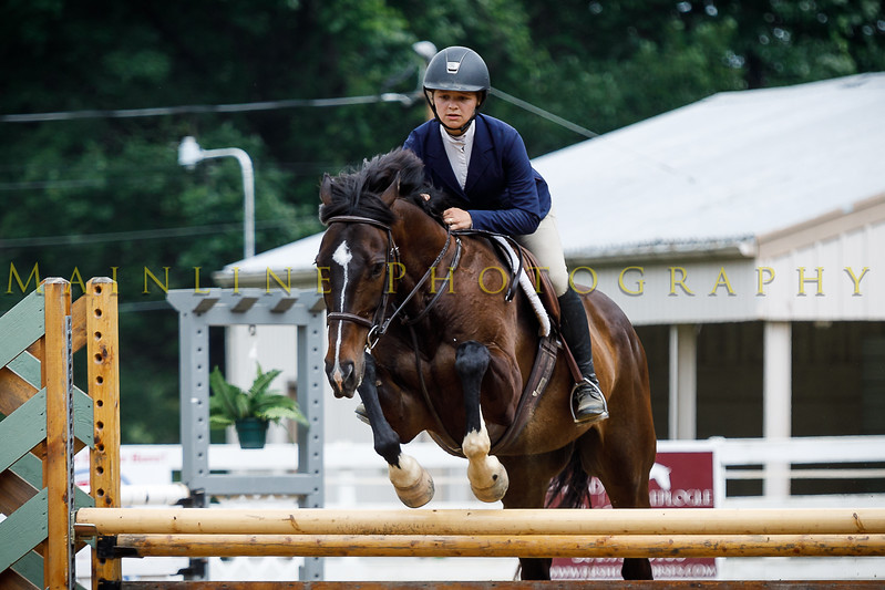 2017 Sewickley Horse Show-1