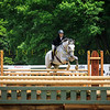 2017 Sewickley Horse Show-4