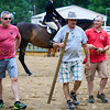 2017 Sewickley Horse Show-255