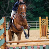 2017 Sewickley Horse Show-7
