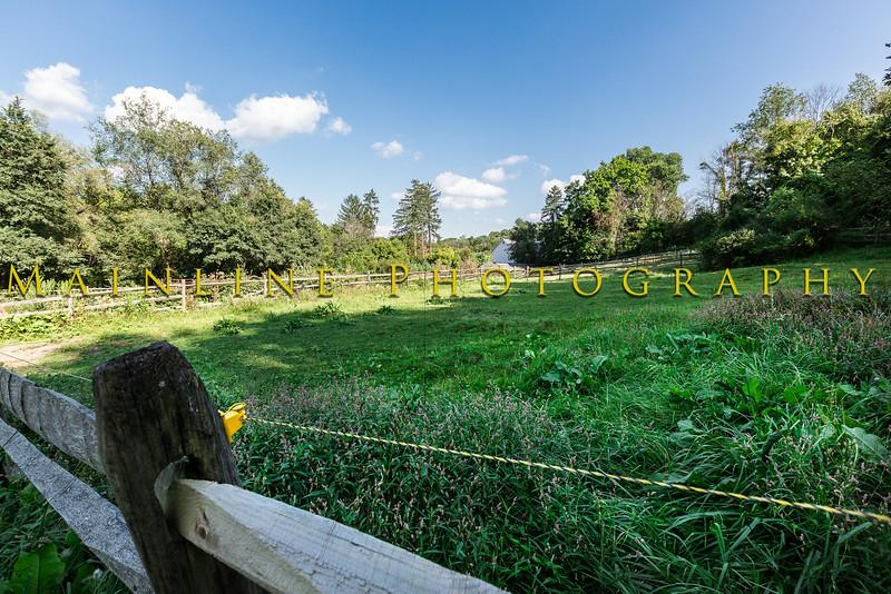 Blackburn Farm - Sewickley, PA-18