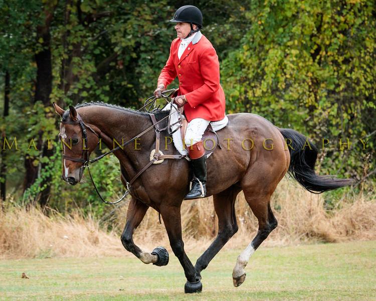 2019 Hartwood Acres-Sewickley Hunt-111