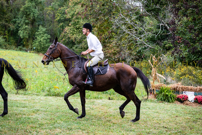 Sewickley Hunt Hunter Pace 2019-83
