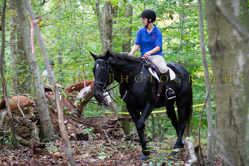 Sewickley Hunt Hunter Pace 2019-64