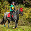 Sewickley Hunt Hunter Pace 2019-131