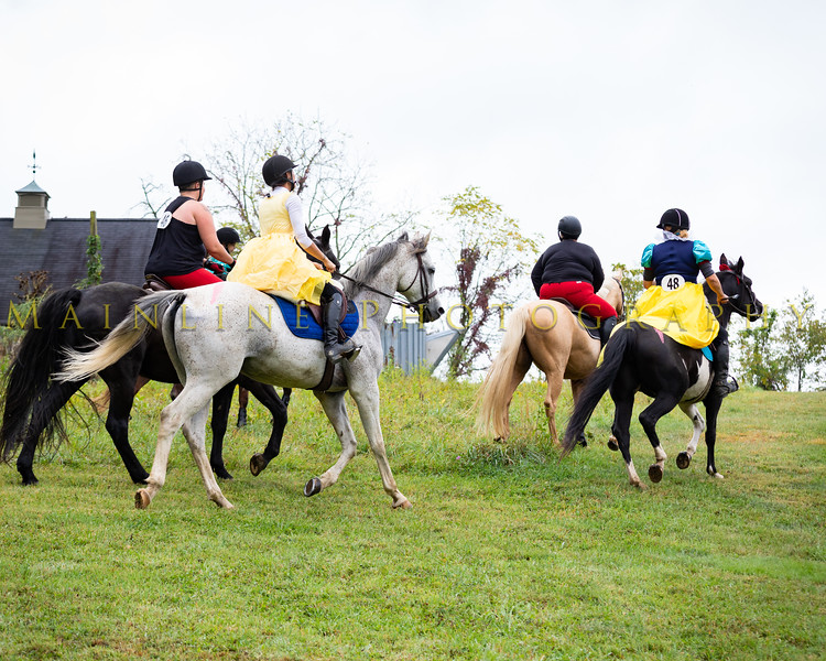 Sewickley Hunt Hunter Pace 2019-99
