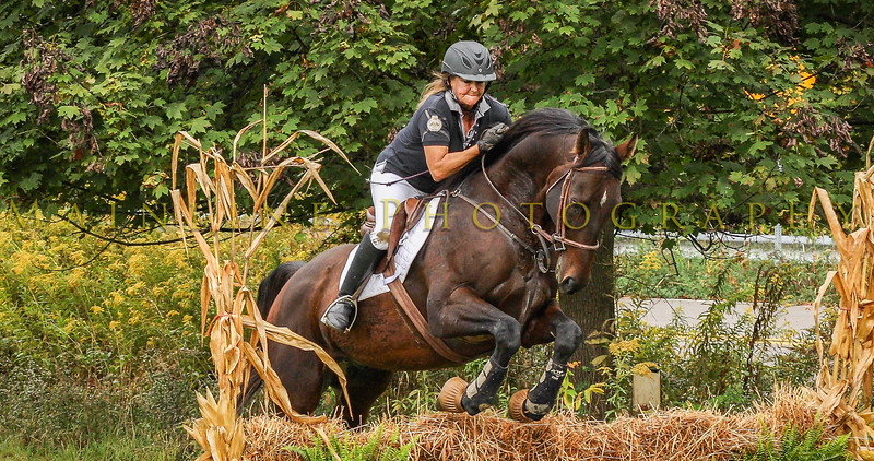 Sewickley Hunt Hunter Pace 2019-108