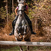Sewickley Hunt Hunter Pace 2019-147
