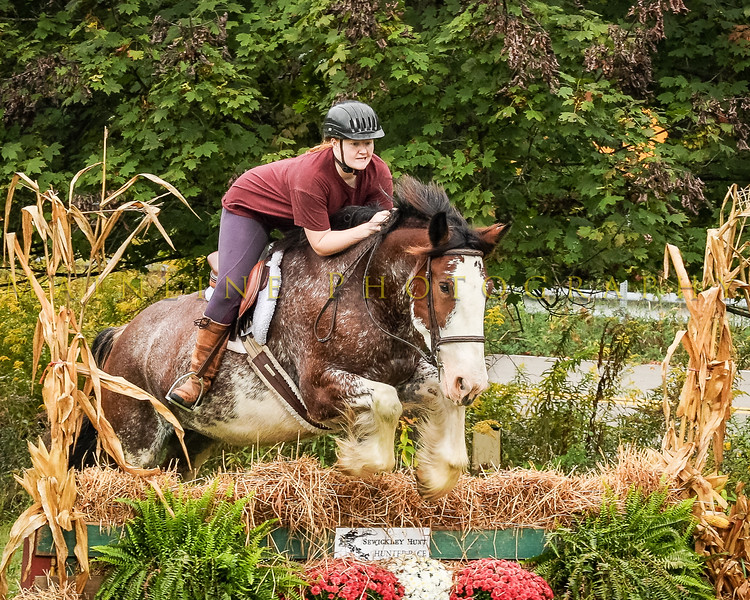 Sewickley Hunt Hunter Pace 2019-107
