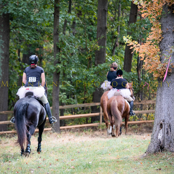 Sewickley Hunt Hunter Pace 2019-74