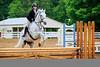 2015 Sewickley Hunt Horse Show-Saturday-69