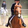 2016 SH Horse Show-917