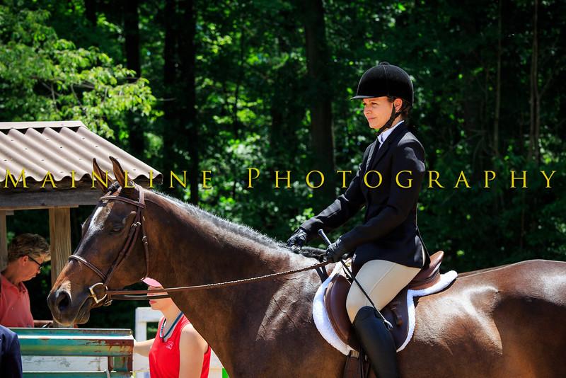 2016 SH Horse Show-588