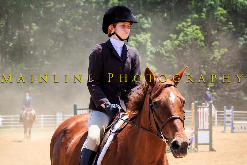 2016 SH Horse Show-900