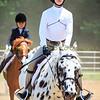 2016 SH Horse Show-913
