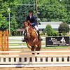 2016 SH Horse Show-501