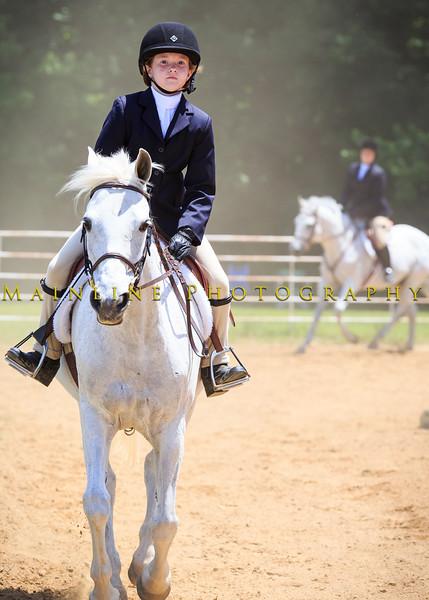 2016 SH Horse Show-920