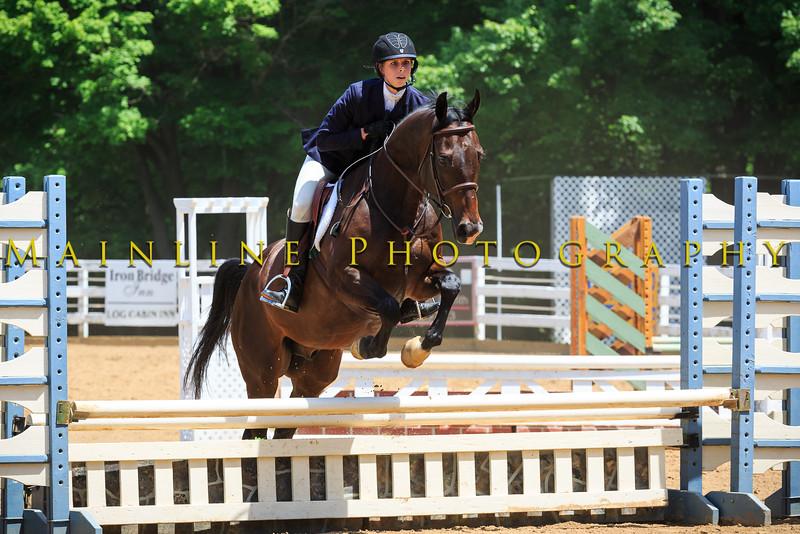 2016 SH Horse Show-642