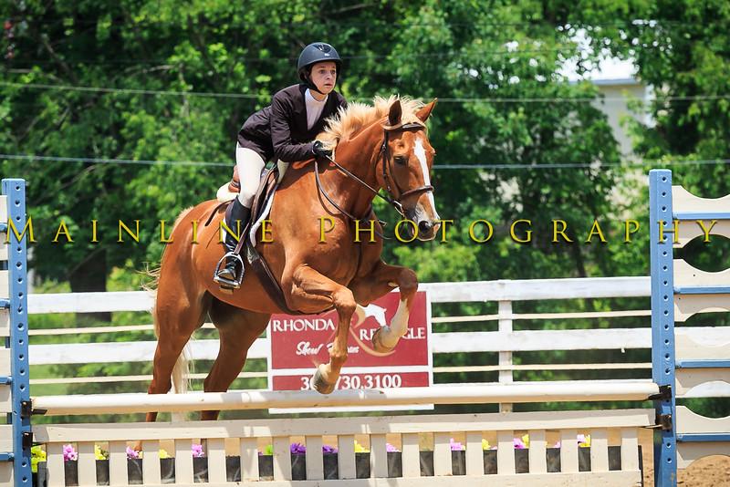 2016 SH Horse Show-1025