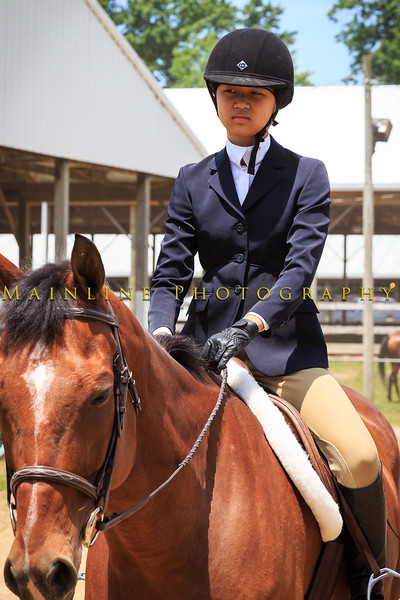 2016 SH Horse Show-1100