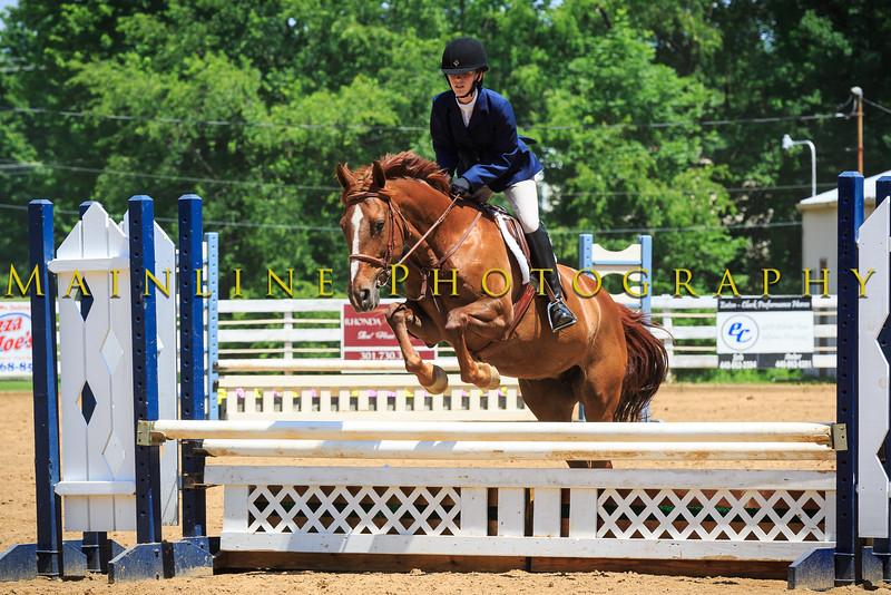 2016 SH Horse Show-513