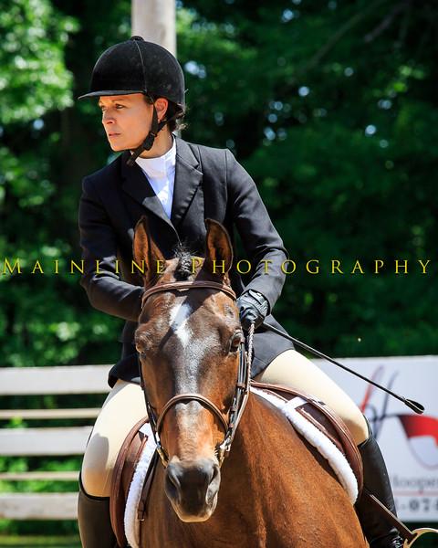 2016 SH Horse Show-610