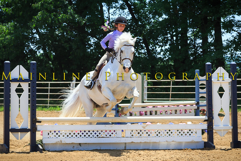 2016 SH Horse Show-809
