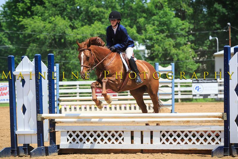 2016 SH Horse Show-666