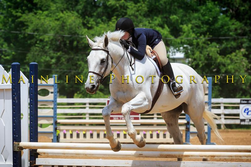 2016 SH Horse Show-1064