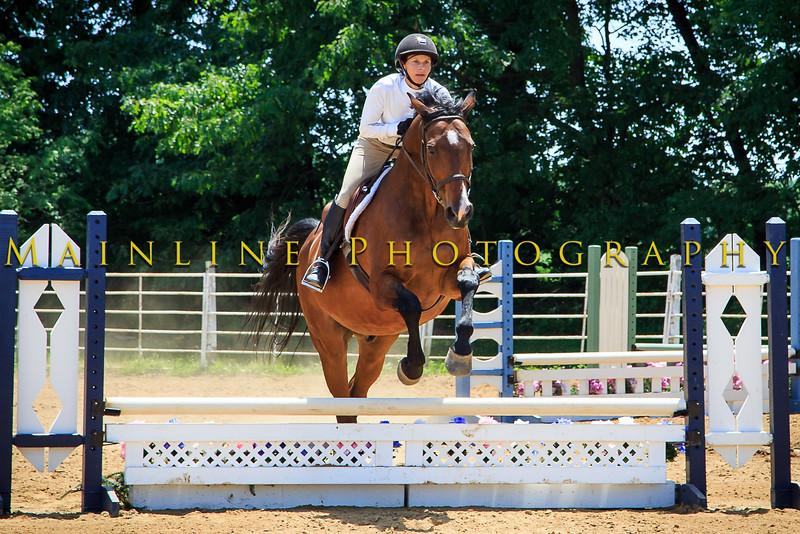 2016 SH Horse Show-776