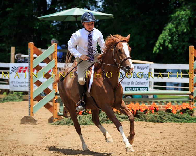 2016 SH Horse Show-1109