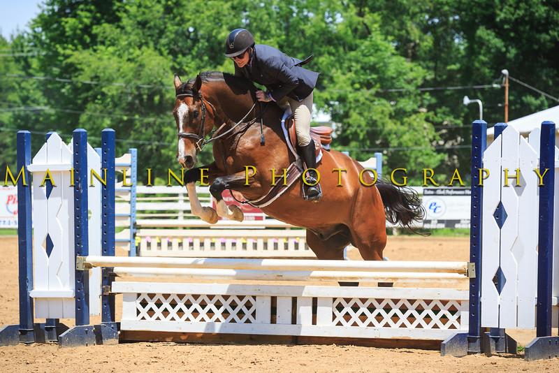 2016 SH Horse Show-847