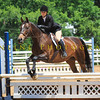 2016 SH Horse Show-496