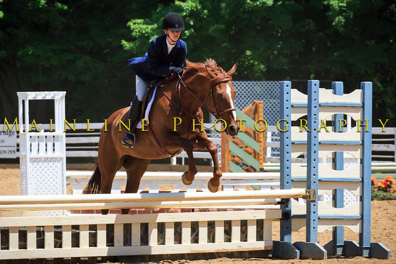 2016 SH Horse Show-510
