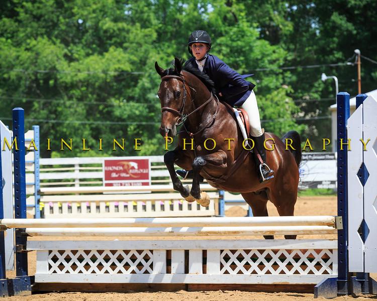 2016 SH Horse Show-645